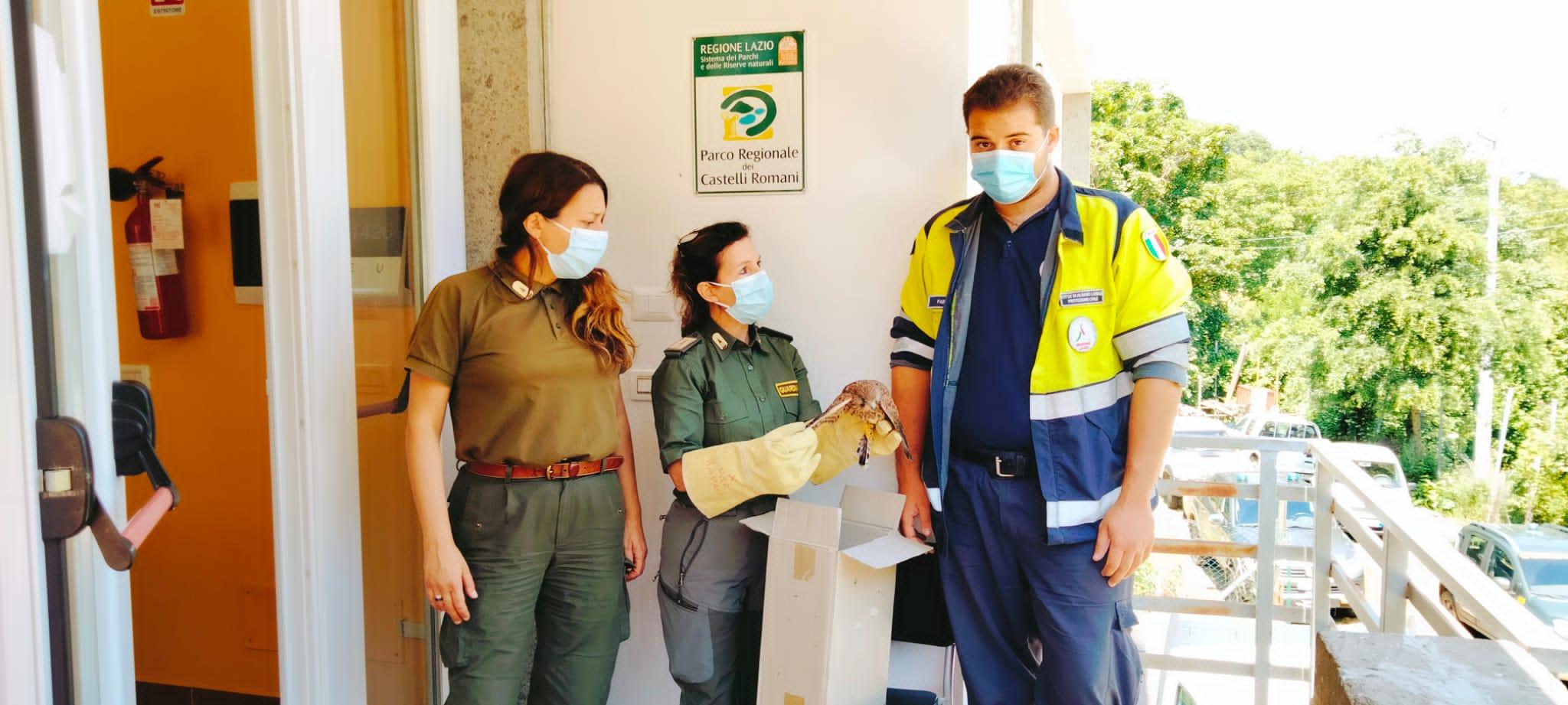 albano protezione civile guardaparco