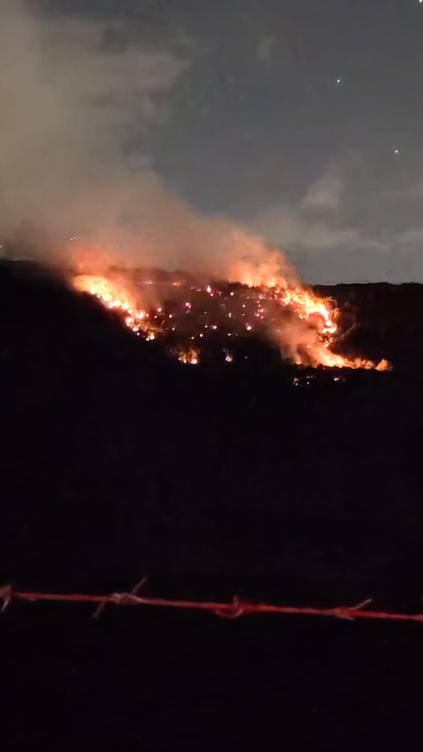 Ambiente, incendi e devastazione: il mondo va in fiamme