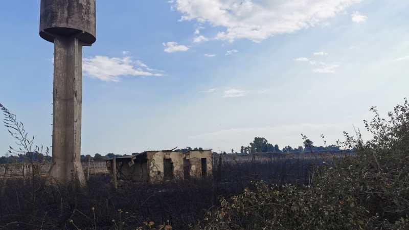 Velletri, intervento di Vigili del Fuoco e Protezione Civile  per spegnere un incendio in zona Cisternense