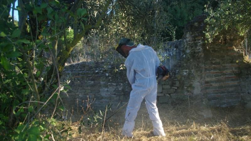 Ariccia, parte la Campagna di Valorizzazione dell'Appia Antica 2021 con il taglio dell'erba nei siti archeologici