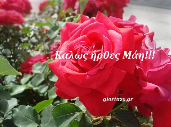 Καλώς ήρθες Μάη!  Καλή Πρωτομαγιά!.