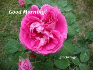 Good Morning!…..giortazo.gr