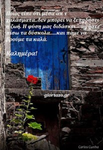 Read more about the article Ποιος είπε ότι μέσα απ τ χαλάσματα..δεν μπορεί να ξεπηδήσει η ζωή. Η φύση μας διδάσκει….αφήστε πίσω τα δύσκολα…..και πάμε να βρούμε τα καλά. Καλημέρα!…..giortazo.gr