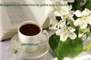 Read more about the article Καλημέρα αγαπητότατοι φίλοι και φίλες🌞😊