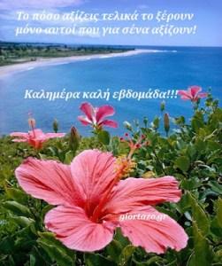 Καλημέρα καλή εβδομάδα!!!  ……giortazo.gr