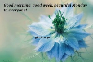 Good morning, good week, beautiful Monday to everyone….giortazo.gr