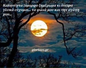 Καληνύχτα !💕🌹όμορφο ξημέρωμα κι όνειρα γλυκά εύχομαι… τα φιλιά μου και την αγάπη μου🌹