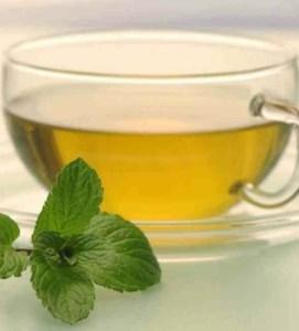 Read more about the article Τα 5 τσάγια από βότανα που θα σας κάνουν να νιώσετε καλύτερα