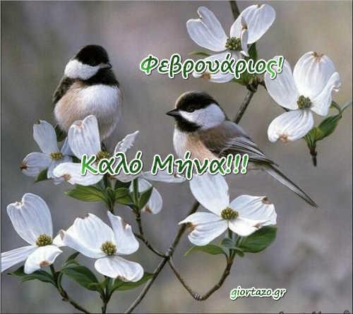 Φεβρουάριος Εικόνες Καλό Μήνα  …giortazo.gr