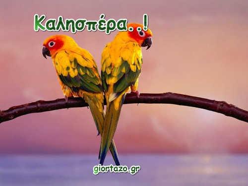 Καλησπέρες  …giortazo.gr