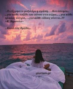 ..Τι εύχρηστο μαξιλάρι η αγάπη… 🌹…Κατάλληλο… …για κάθε ταξίδι του πόνου στο σώμα… 🌹…για κάθε ηλικίας όνειρα… …για κάθε είδους νύστα…!!! ~Κ. Δημουλα~🌹🌹 🌟…Καλό σας Βράδυ…🌟giortazo.gr