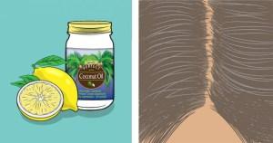 Λεμόνι + Λάδι Καρύδας | Πώς Χαρίζουν Και Πάλι Φυσικό Χρώμα Στα Γκρίζα Μαλλιά!