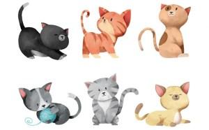 ΤΕΣΤ: Διάλεξε Τη Γάτα Που Σε Αντιπροσωπεύει Περισσότερο!