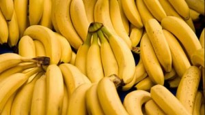 Read more about the article Κι όμως οι μπανανόφλουδες ΔΕΝ είναι άχρηστες …! Άγνωστες χρήσεις της… μπανανόφλουδας που πρέπει να γνωρίζετε