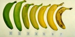 Read more about the article Ποια απ' αυτές τις μπανάνες είναι η πιο υγιεινή επιλογή και γιατί; H απάντηση σίγουρα θα σας διαψεύσει!