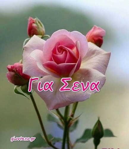 Κάρτες Αγάπης Love Cards  .. giortazo.gr