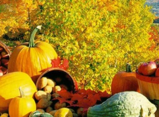 Φθινόπωρο και διατροφή