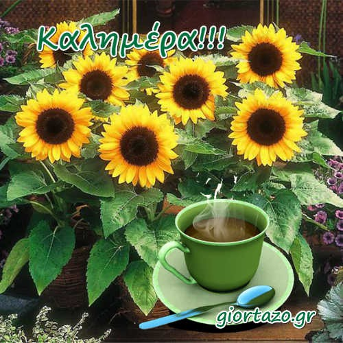 Καλημέρα Όμορφες Εικόνες Με Λουλούδια