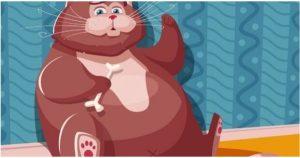 Read more about the article Έτσι και κάνεις σχέση με αυτά τα Ζώδια, ετοιμάσου γιατί θα πάρεις κιλά!