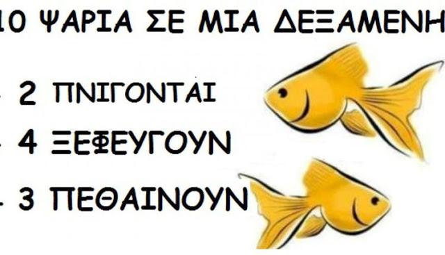 Το 95% των ανθρώπων αδυνατεί να λύσει τον γρίφο με τα ψάρια και δεν προσέχει τη λεπτομέρεια