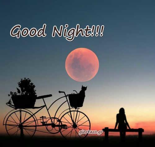 Gifs For Good Night girl moon