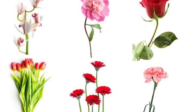 Πες το με ένα λουλούδι