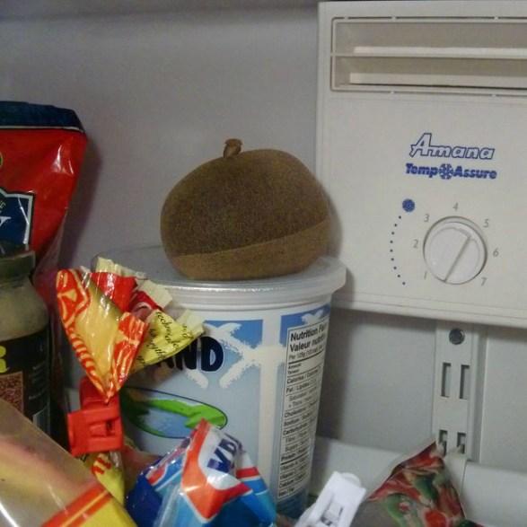 το απόλυτο αποσμητικό ψυγείου