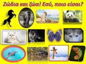 Αν ήσουν ζώο, ποιο θα ήσουν, ανάλογα με το ζώδιο σου;