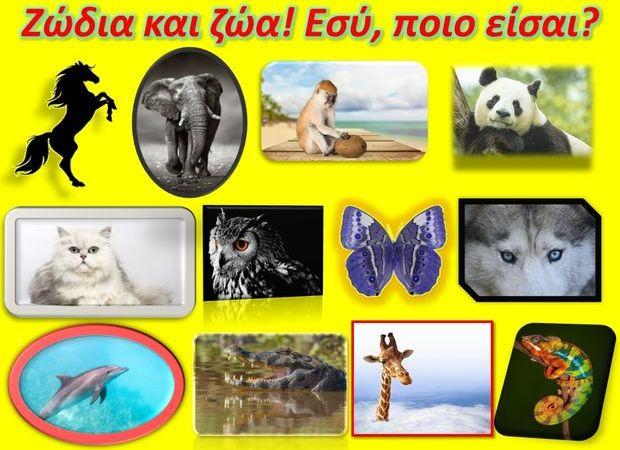 τι ζώο είσαι ανάλογα το ζώδιό σου