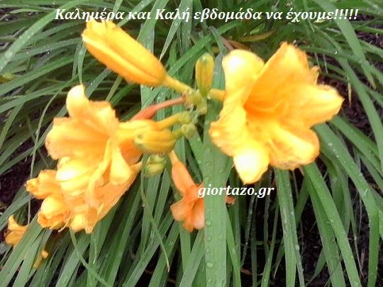 καλη εβδομαδα λουλουδια