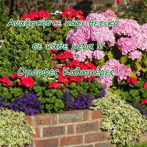 καλημερες λουλουδια