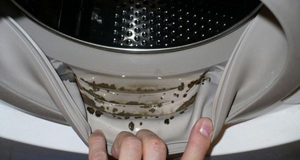 Το πλυντήριό σας είναι γεμάτο επικίνδυνη μούχλα