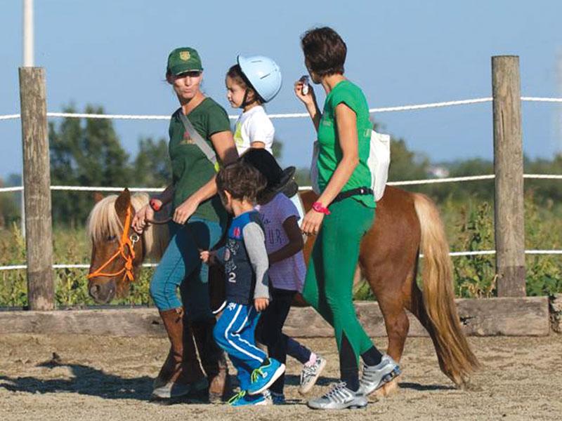 GG cavalli in piemonte4