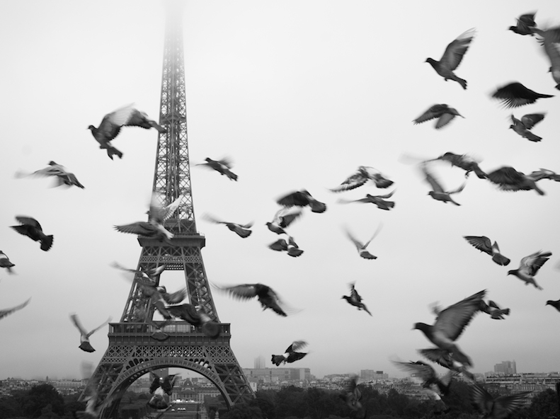 Caterina e la voceche ti porta a Parigi