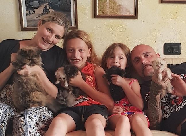 La famiglia dei gatti in una casa nel bosco