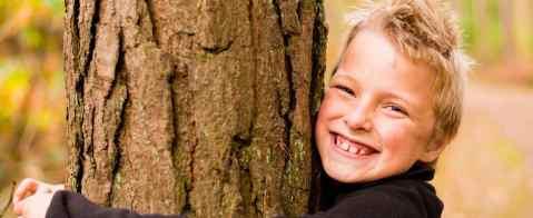 Festa Nazionale degli Alberi: Forest Therapy per famiglie con la fata Elèin