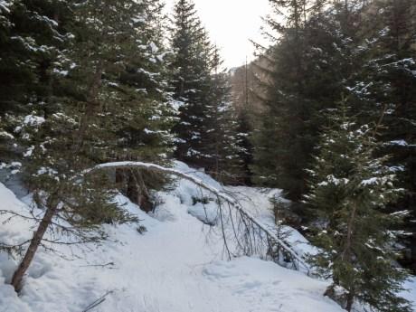 arlberger_winterklettersteig-2016-21