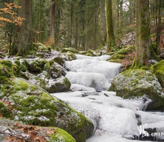 Gertelbach Wasserfälle Favorit