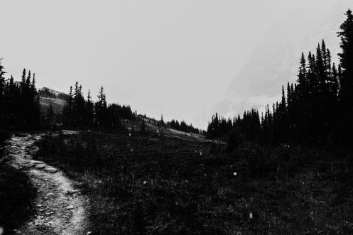 Wir überqueren die Schnellfallgrenze am Mount Edith Cavell