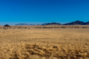 Die Steppe im Namibrand Nature Reserve, Namibia