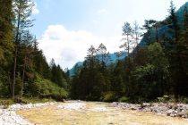 Gebirgsfluss im Triglav Nationalpark