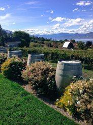 Weingut in den Bergen von Kelowna am Okanagan Lake, British Columbia