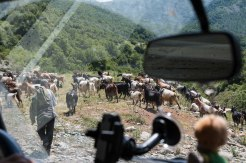Albanischer Stau