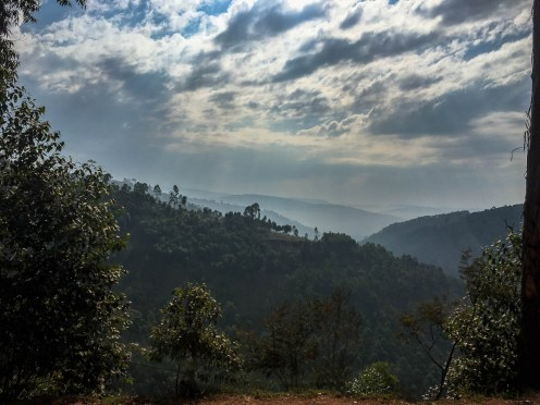 Uganda: Berge und Teefelder