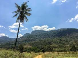 Udzungwa Berge in Tansania