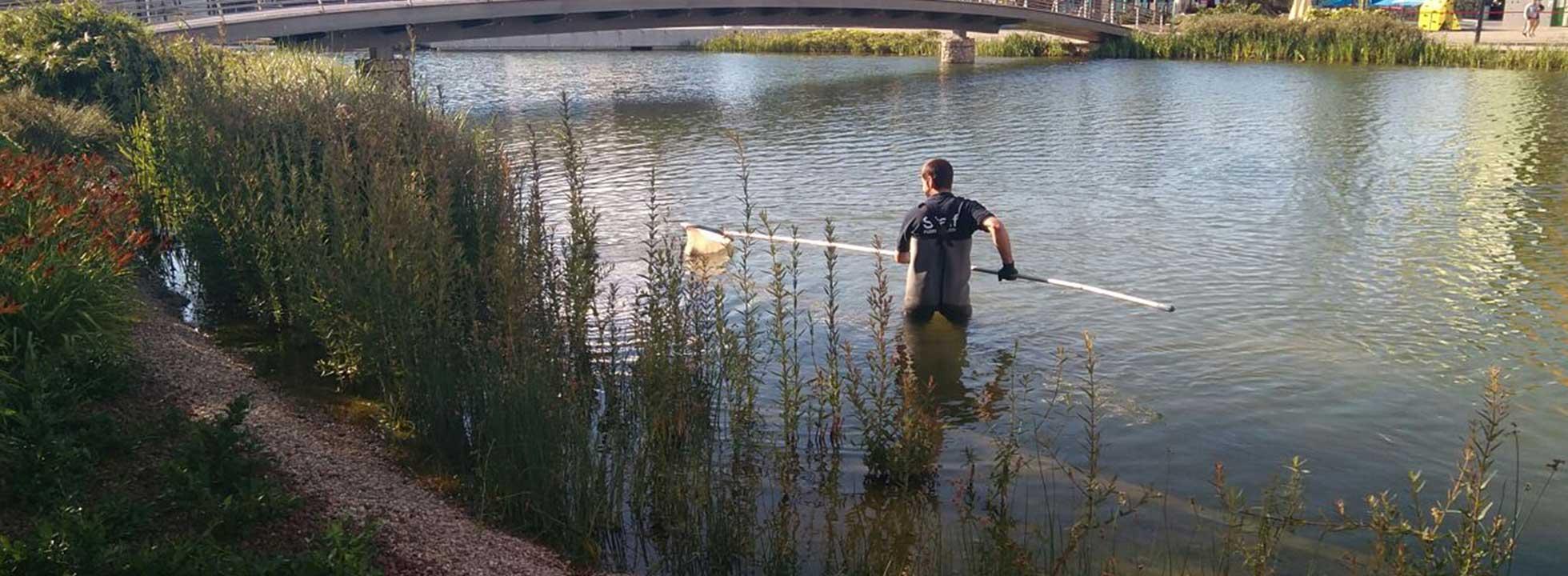 llac1