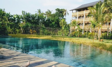 Bali Honeymoon Alaya Ubud pool