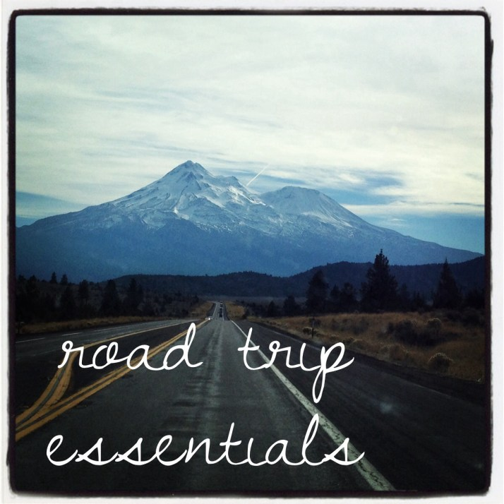 Road Trip Essentials   Girl on the Move Blog