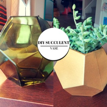 diy succulent vase or planter