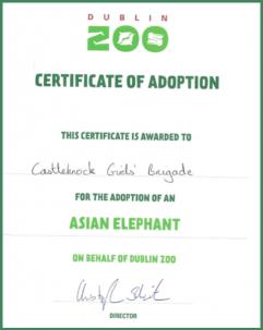 Dublin Zoo Certificate of Adoption